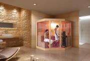 Sauna seca premium AX-006